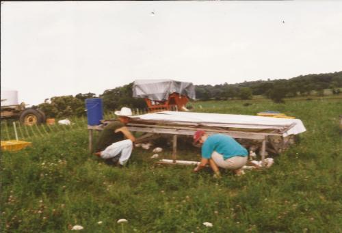 pastured poultry_kmp1999