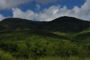 zimbabwe-boarder